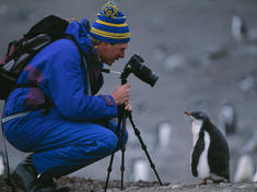 Ecotourist and Gentoo penguin chick, Half Moon Island