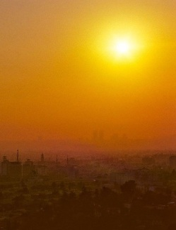 Vintage-Photos-of-Hollywood-in-1979-Sunset-crop